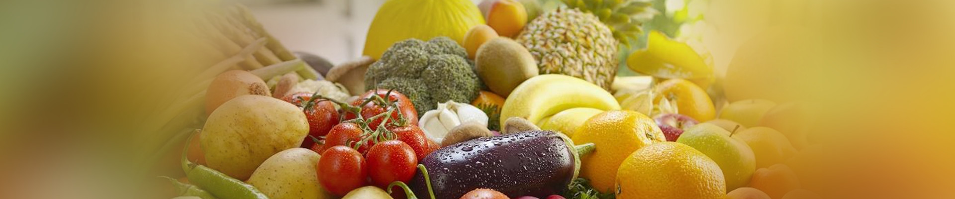 nutritionist-banner
